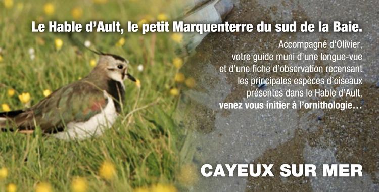 """Sortie nature """"Le Hable d'Ault"""""""