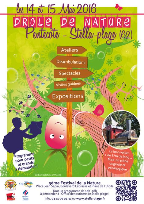 50 activités nature avec les enfants  Petites créations au fil des saisons
