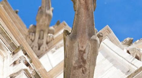 ANCIENNE COLLÉGIALE ROYALE SAINT VULFRAN – ASCENSION DES TOURS