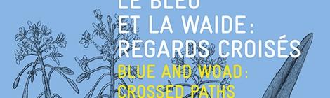 LE BLEU ET LA WAIDE : REGARDS CROISÉS