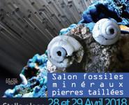 SALON FOSSILES MINÉRAUX ET PIERRES TAILLÉES