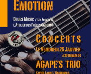 BLUES EMOTION