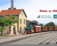 BALADE AU HABLE / Train & Trottinette tout-terrain électrique