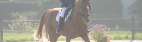 Equitation.