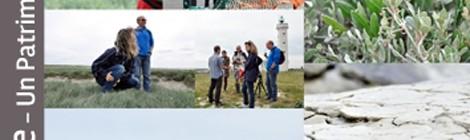 Découverte de la Pointe du Hourdel et de la colonie de phoques