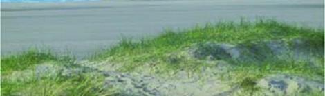 """Sortie nature """"Enquête sur une disparition"""" par le service Animation Nature"""