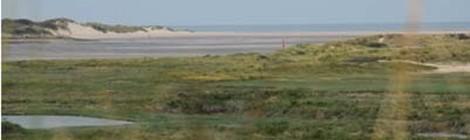"""Sortie nature """"Enquête sur la plage"""" par le service Animation Nature"""