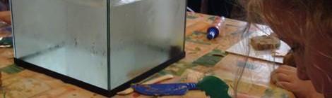 Atelier en famille : je sculpte mon poisson