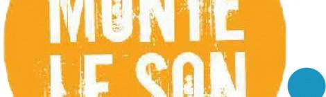 Monte Le Son, le Off du festival Rock en Stock