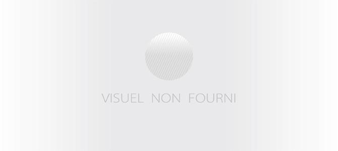 VISITE GUIDÉE L'HÔTEL DE VILLE...