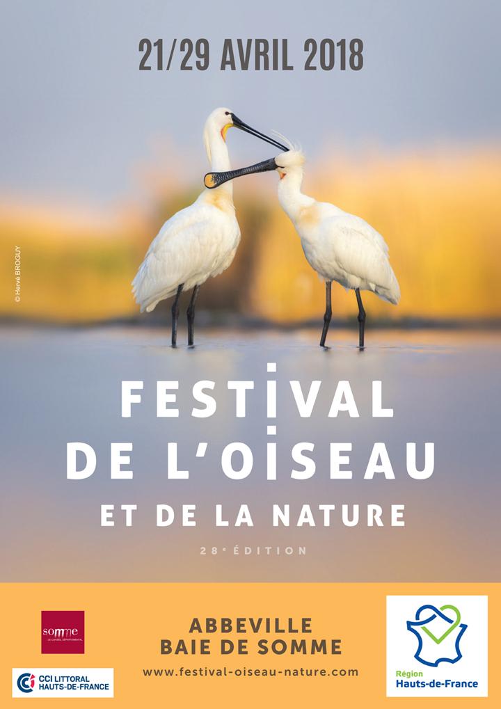 21 04 abbeville festival de l'oiseau