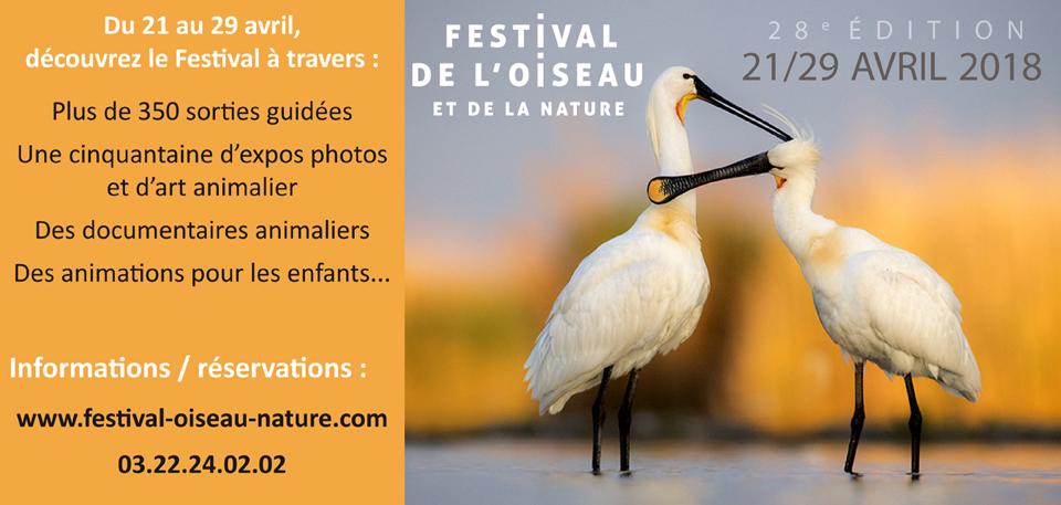 21 04 abbeville festival de l'oiseau zoom