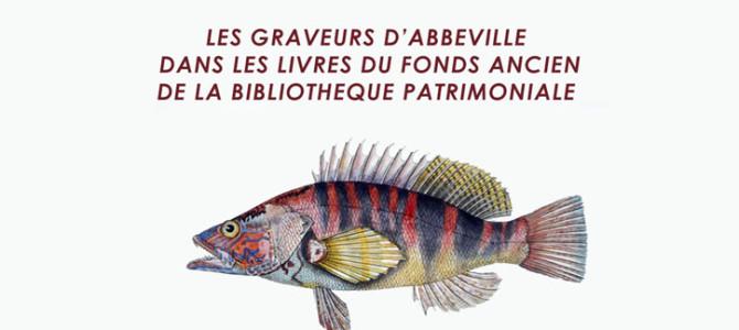 LES GRAVEURS ABBEVILLOIS