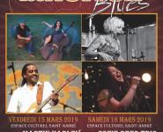 LES NUITS DU BLUES, 25ème édition