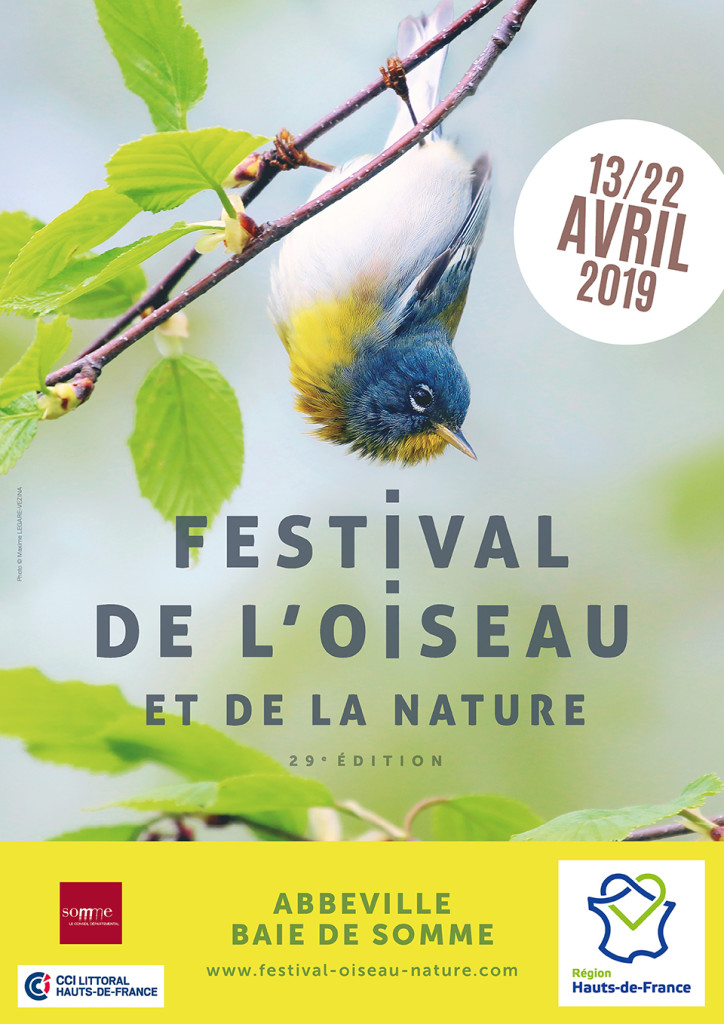 20 04 festival oiseau