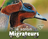 SALON DES MIGRATEURS