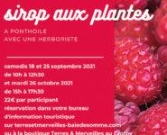 ATELIER DE FABRICATION D'UN SIROP AUX PLANTES